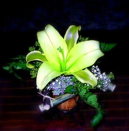 цветы, букет, лилия